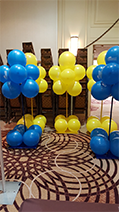 Blue and Yellow, Rick's Balloon Creations